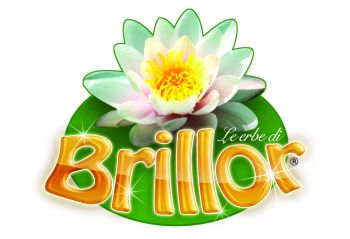 Logo Brillor