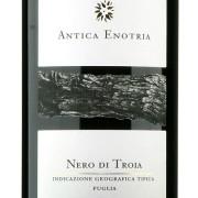 Nero_troia2